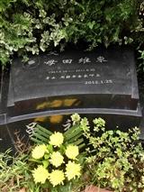 维东墓地(4)
