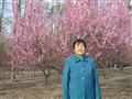 妈妈2006年在京