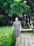 生命之树(二)